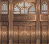 加工铜门不锈钢材料-可旧-带黑拉丝