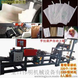 ZDJ新型全自动化芒果纸袋机