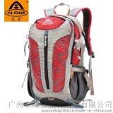 河北白沟背包厂家艾王AIONE销售尼龙双肩背包户外旅行背包25L贴牌oem
