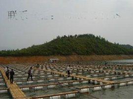 網箱養魚專用網箱,不鏽鋼網箱,金屬網箱