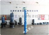 農用灌溉QJ深井潛水泵結構