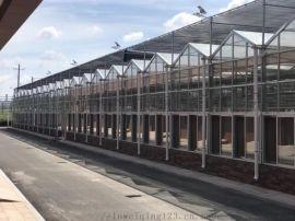 河北智能温室大棚专业团队-温室大棚造价低质量好