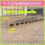 湖南新建猪场使用新型改造母猪定位栏