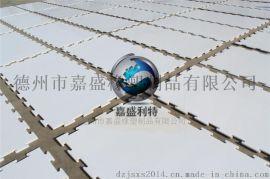 塑料溜冰板材 抗静电高分子板 高分子灭菌隔层板