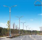 泰格LED照明灯、9米路灯杆、单双臂路灯、高低路灯