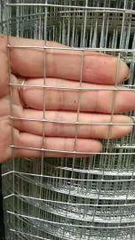 安平厂家建筑抹墙电焊网、中小丝电焊网现货可定做