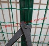 太原水庫荷蘭網現貨@山西池塘的隔離荷蘭網@忻州山林圍欄養雞鐵絲網