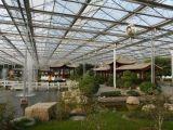 山东五合生态餐厅温室