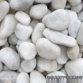 白色鹅卵石 白色石子 汉白玉石子 纯白小石头