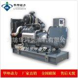濰柴200kw柴油發電機組 WP10D200E200柴油機 配無刷電機全國聯保