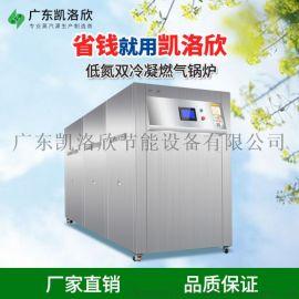 洗涤厂燃气蒸汽发生器厂家 凯洛欣KNS蒸汽源