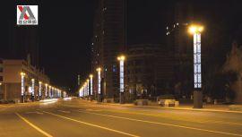 信安照明厂家直销特色LED景观灯