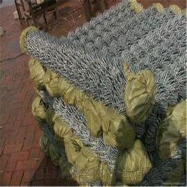 钱森QS-GH522镀锌菱形铁丝网  植草铁丝网