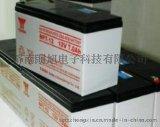 原装松下12v17AH储能蓄电池