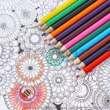 彩色鉛筆 12色 彩色鉛筆 筒裝 繪畫鉛筆 桶裝十二色鉛筆套裝