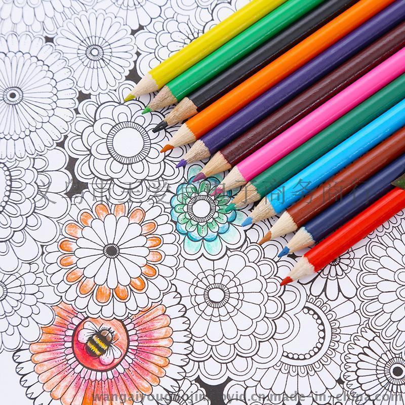 彩色铅笔 12色 彩色铅笔 筒装 绘画铅笔 桶装十二色铅笔套装