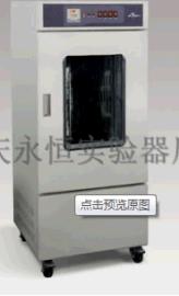 永恒生化培养箱SHH-L系列