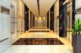 石材水性防護|石材防護|石材護理|喜得興