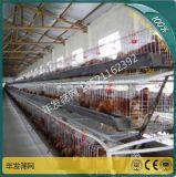 阶梯式自动化养殖设备 自动喂料机三层养鸡蛋鸡笼 出口养鸡设备