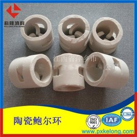 萍乡科隆直销优质陶瓷鲍尔环 瓷质鲍尔环现货