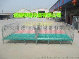 河北诚信高培优质保育床镀锌管仔猪保育栏自产自销厂家价格低