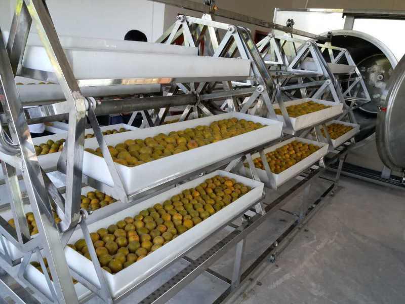 中药材、农产品、罗汉果、果脯微波真空干燥机