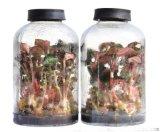 650ml组培瓶,批发金线莲组培瓶,云南铁皮石斛组培瓶供应商,组培瓶价格