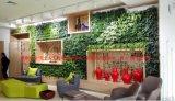 禧雅世家-无土栽培植物绿墙,绿植墙,垂直绿化,