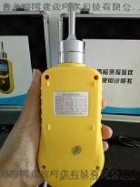 国产泵吸式有毒有害气体检测仪