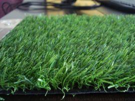 供应陕西婚庆地毯人造草坪