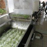 安徽 花椒杀青生产线  鲜花椒加工设备 花椒漂烫机