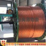 供应铜合金绞线 防雷纯铜接地干线厂家垂直销售