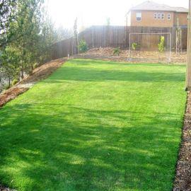 仿真草坪人造草坪塑料草皮运动健身休闲娱乐场所