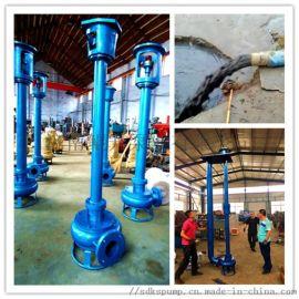 4KW污水液下泵 泥浆抽取立式泵 长杆污泥清理泵