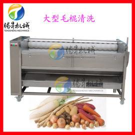 多功能喷淋式毛刷清洗机 土豆清洗机