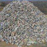 長期大量供應多型號鵝卵石濾料 天然鵝卵石 雨花石