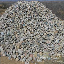 长期大量供应多型号鹅卵石滤料 天然鹅卵石 雨花石