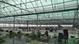【荣创温室】河南|信阳|息县双拱连栋薄膜温室