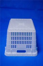 云南塑料筐、塑料周转筐批发、塑料筐进货渠道