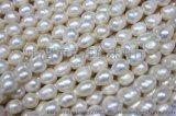卓偉珍珠 淡水珍珠項鍊9mm米型羅紋項鍊 珍珠飾品低檔150325