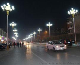 四川中华景观路灯生产丶德阳LED中华灯厂家