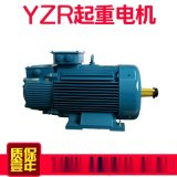 廣州現貨供應YZR YJZR2起重電機 銅線製造