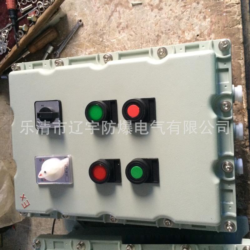 廠家直銷 BXK系列隔爆型控制箱 廠家批發供應 防爆端子箱