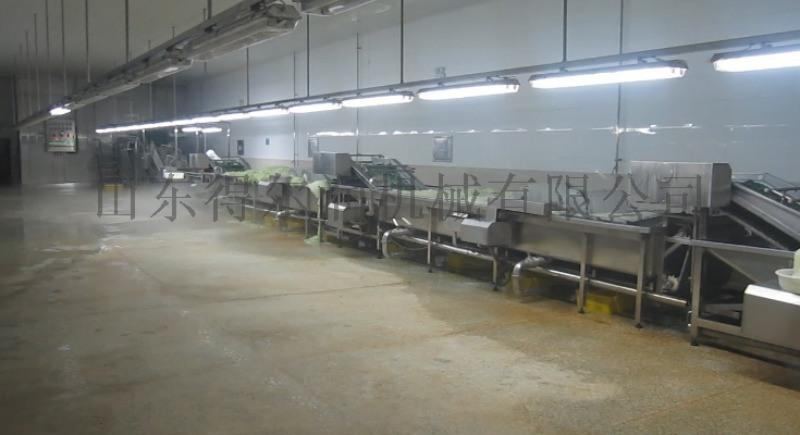 沈阳净菜生产多功能气泡清洗设备 自动大白菜清洗机