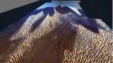 米兰世博会LED显示屏