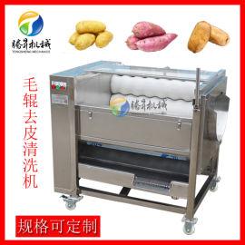 厂家定制毛刷清洗去皮机 莲藕土豆清洗去皮机