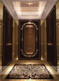 珠海电梯装潢、珠海电梯装修、珠海电梯装饰