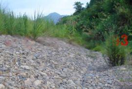 河道拦石铅丝笼 固堤防洪镀锌包塑铅丝网箱 安平利众