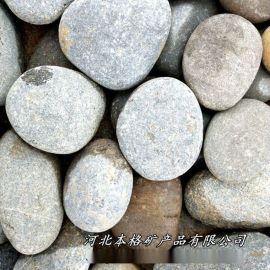 本格供应河滩石天然园林石头鱼缸装饰铺地鹅卵石景观石