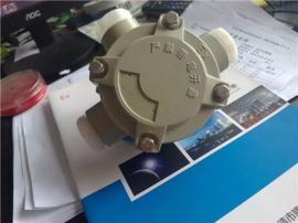 BHD51-H-G3/4三通吊防爆分線盒